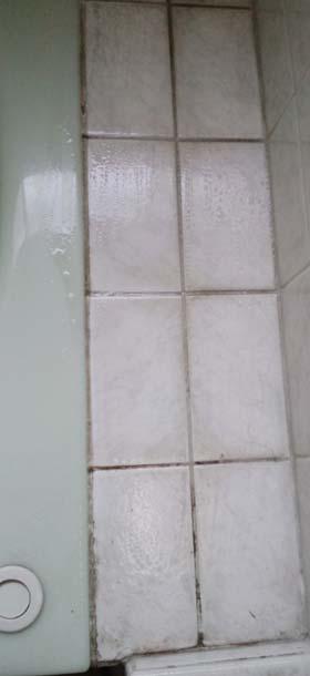bath-meji-kurozumi0jpg.jpg