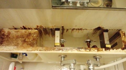 bathroom-counter-bunkai.jpg