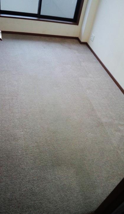 carpet-akibeya-0jpg.jpg