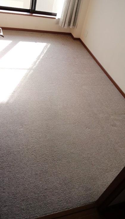 carpet-akibeya-1jpg.jpg