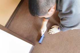 carpet-cleaning-brush.jpg