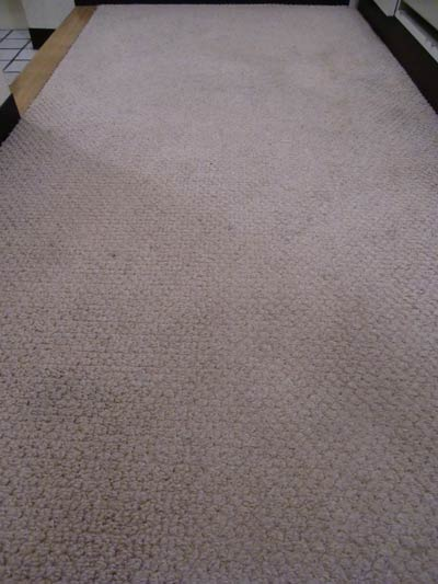 carpet-cleaning-simi00.jpg