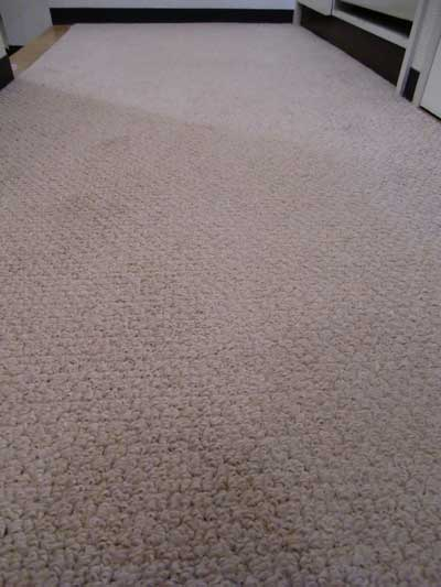 carpet-cleaning-simi01.jpg