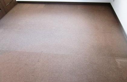 carpet-cleaning1.jpg
