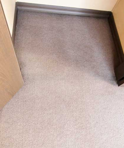 carpet-cleaning11.jpg