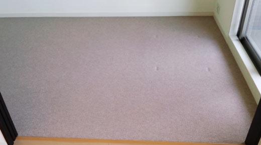 carpet-kagunoato1.jpg