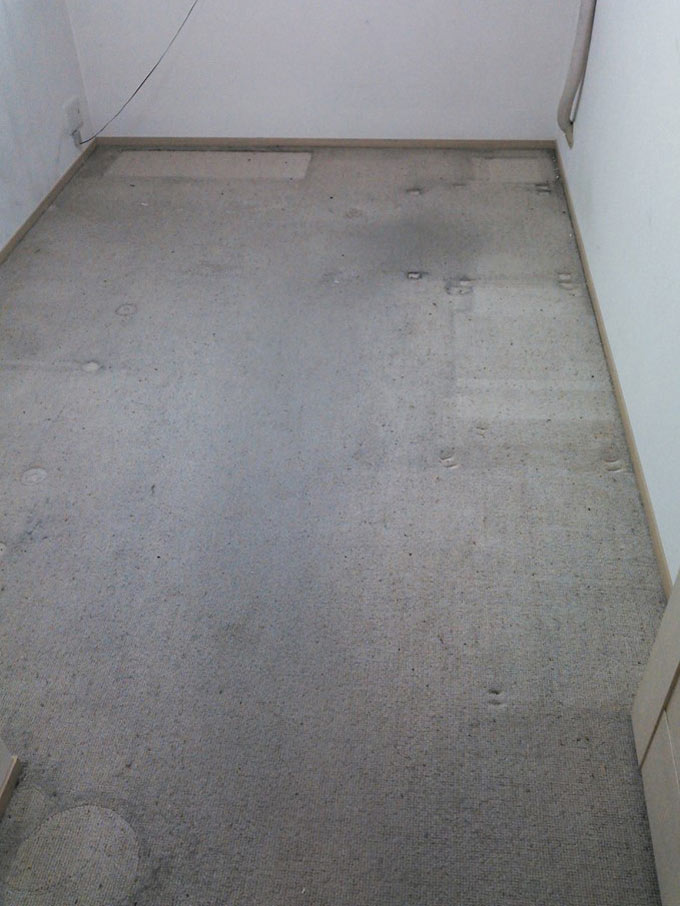 carpet-kurozumiato0.jpg