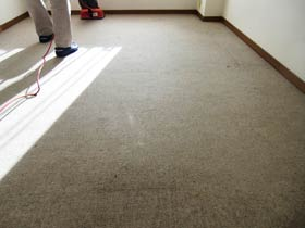 carpetcleaning-bacume0.jpg