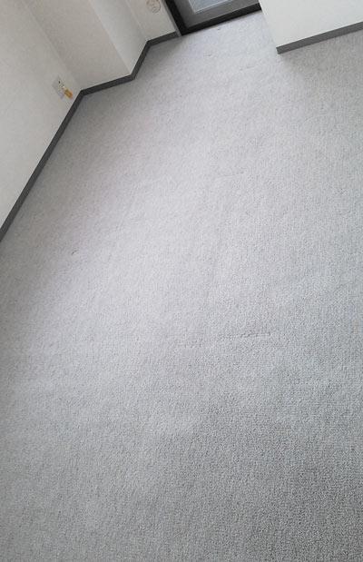carpetcleaning-kagutonokyoukaisen2.jpg