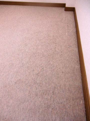 carpetcleaning-kyositu0.jpg
