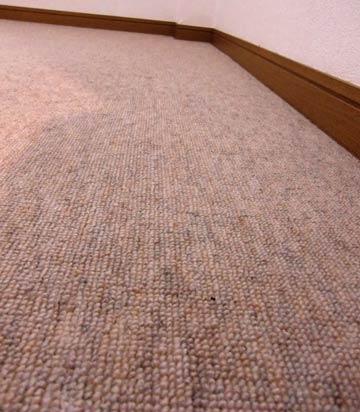 carpetcleaning-kyositu1.jpg