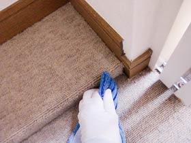 carpetcleaning-polish-hand.jpg