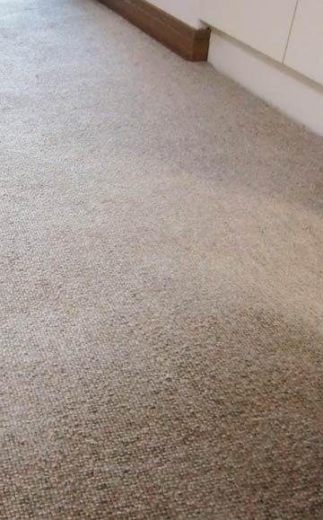 carpetcleaning-rouka-zoom1.jpg