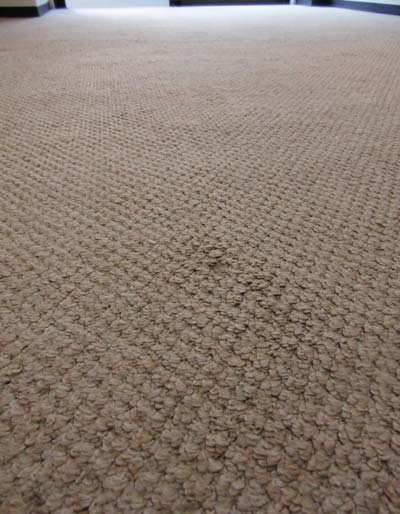 carpetcleaning00.jpg