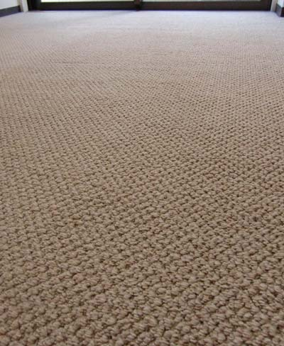 carpetcleaning01.jpg