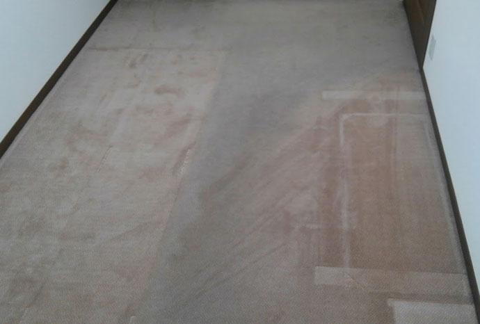 woolkoncarpet1.jpg