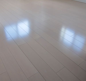 new-floor-wax00.jpg
