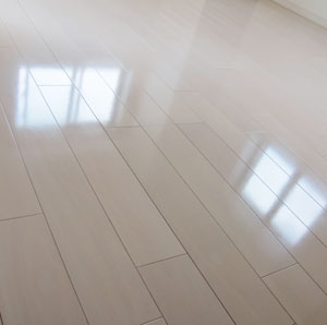 new-floor-wax01.jpg