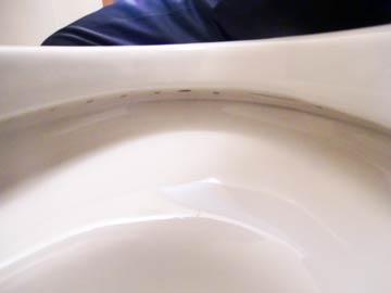 toilet-hutiura-kurozumi-cleaning11.jpg