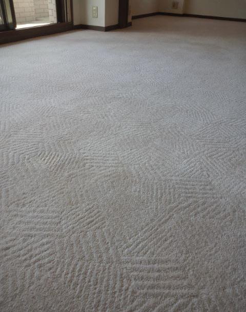 wool100%carpetcleaning2.jpg